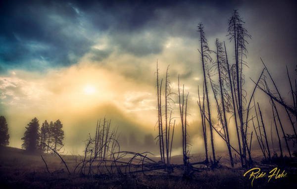 Photograph - Foggy Yellowstone Valley by Rikk Flohr