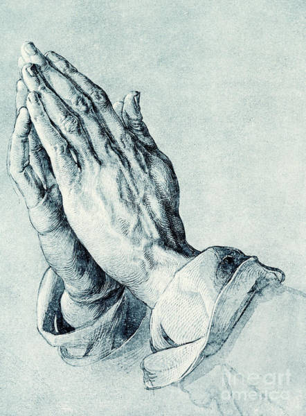 Close Up Drawing - Folded Hands Of An Apostle by Albrecht Durer