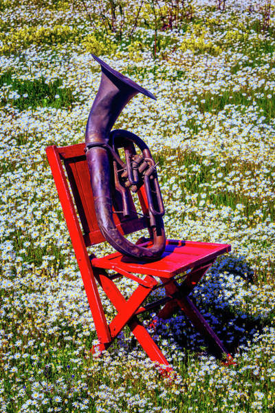 Wall Art - Photograph - Folding Chair With Horn by Garry Gay