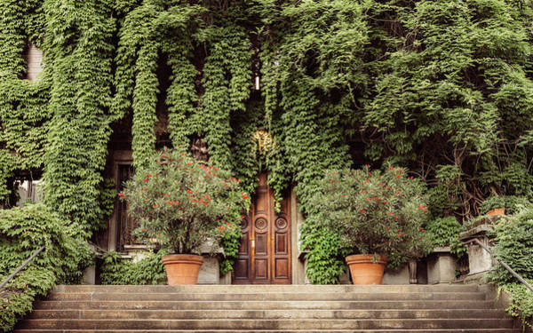 Photograph - Foliage Covered Building by Alexandre Rotenberg