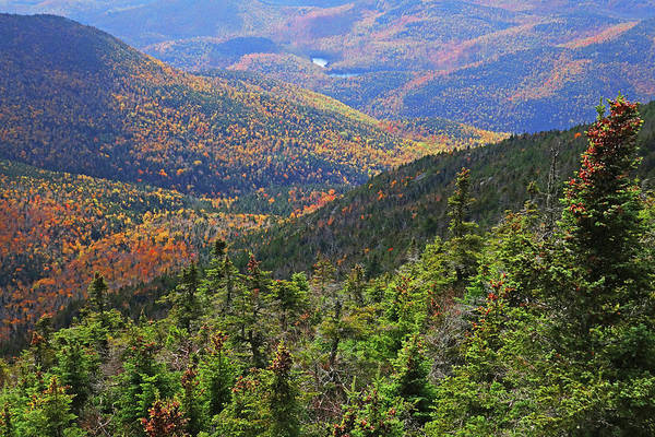 Photograph - Foliage Covered Mountainscape Keene Valley Adirondacks New York by Toby McGuire