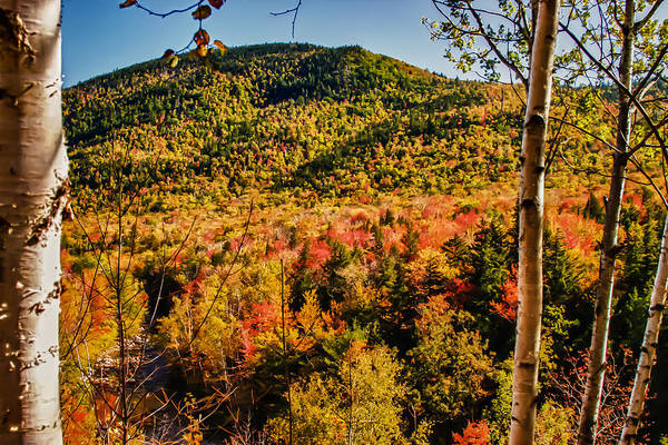 Autumn In New England Photograph - Foliage View From Crawford Notch Road by Jeff Folger