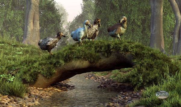Digital Art - Follow The Dodo by Daniel Eskridge