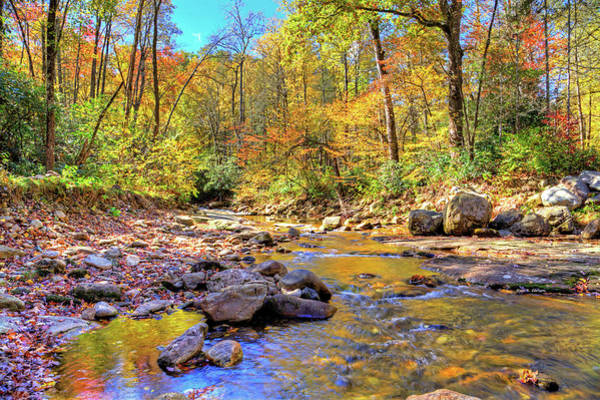 Photograph - Follow The River by Dale R Carlson