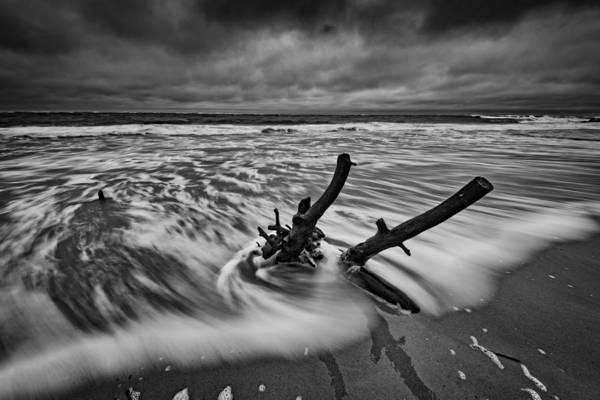 Photograph - Folly Beach Boneyard by Rick Berk