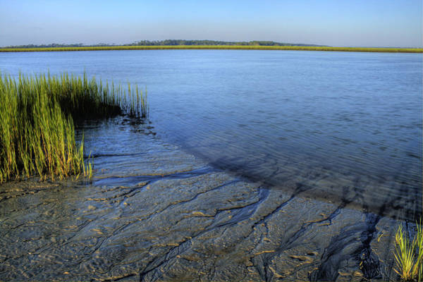 Lowcountry Photograph - Folly Beach Marsh  by Dustin K Ryan