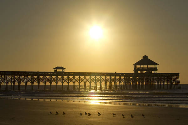 Photograph - Folly Beach Pier Sunrise by Dustin K Ryan