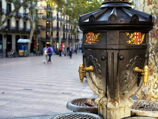 Photograph - Font De Canaletes In Barcelona by John Rizzuto