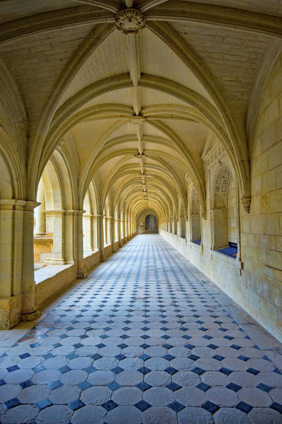 Fontevraud Photograph - Fontevraud Abbey Cloister, Loire, France by Curt Rush
