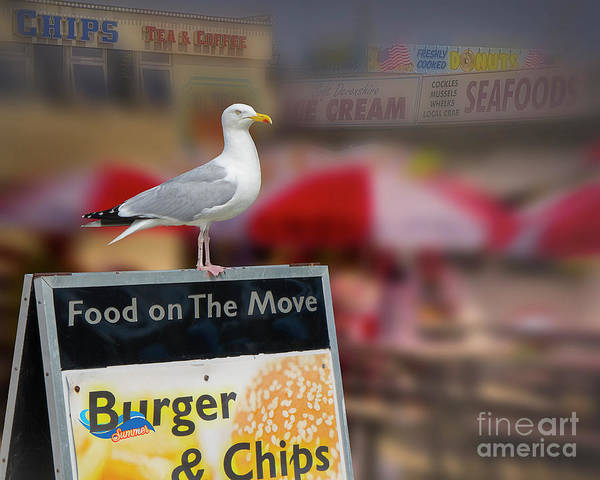 Photograph - Food On The Move by Edmund Nagele
