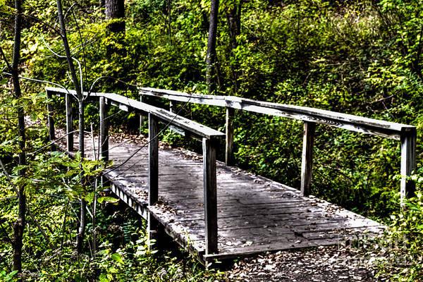 Photograph - Foot Bridge by William Norton