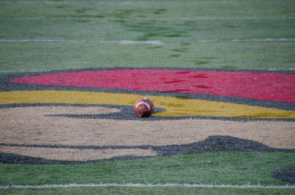 Photograph - Football Game by Bill Cannon