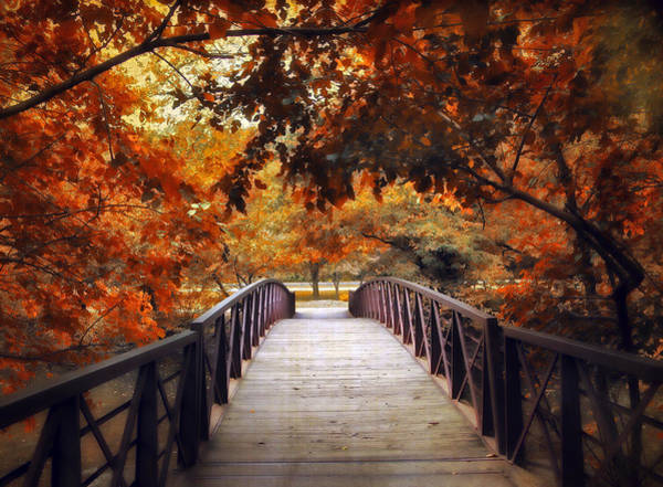 Photograph - Footbridge by Jessica Jenney