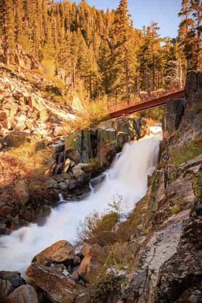 Wall Art - Photograph - Footbridge Over Upper Eagle's Spring Flow by Mike Herron