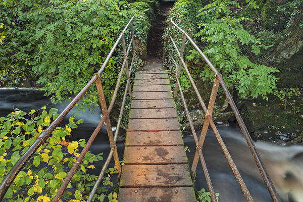 Wall Art - Photograph - Footbridge Over Whitfield Beck by David Taylor
