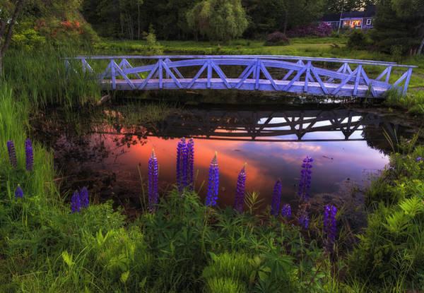 Footbridge Sunset Art Print