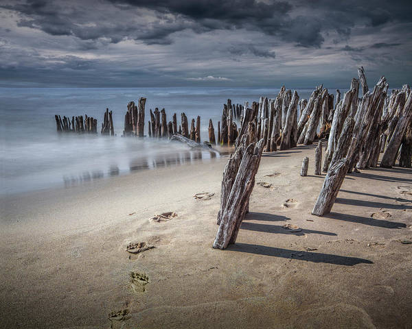 Photograph - Footprints And Pilings On The Beach by Randall Nyhof