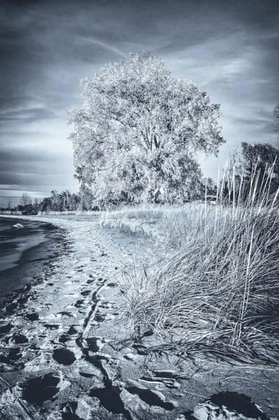 Photograph - Footprints by David Heilman
