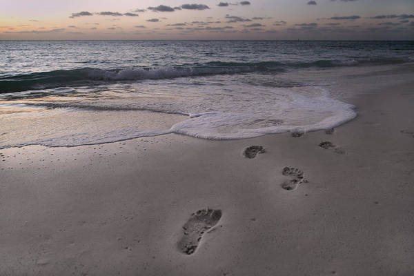 Comtemporary Photograph - Footprints In The Sand by Betsy Knapp