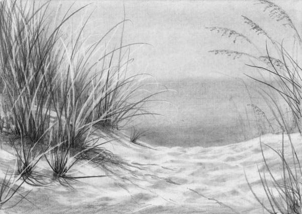 Beach Grass Drawing - Footprints In The Sand by Nolan Clark