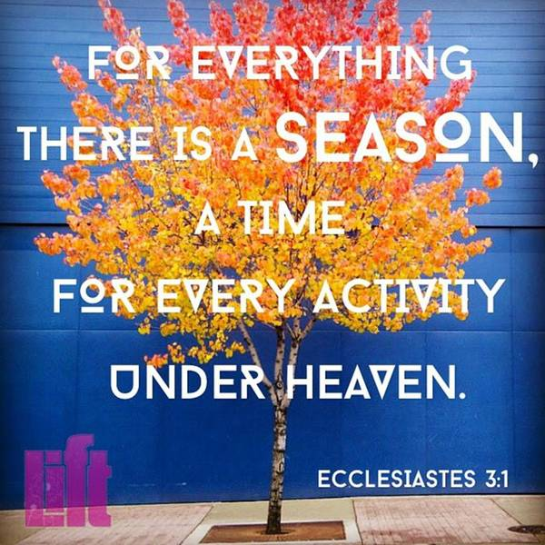 Design Wall Art - Photograph - For Everything There Is A Season, A by LIFT Women's Ministry designs --by Julie Hurttgam
