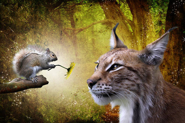Big Cat Digital Art - For You by Julie L Hoddinott
