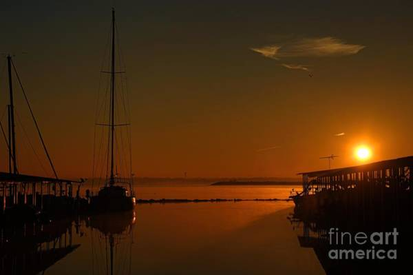 Photograph - For Your Love Of Boats by Diana Mary Sharpton