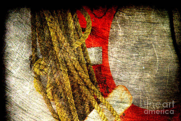 Wall Art - Photograph - For Your Safety by Susanne Van Hulst