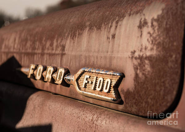 Photograph - Ford F-100 by Terry Rowe