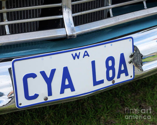 Photograph - Ford Fairlane Victoria 07 by Rick Piper Photography