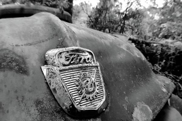 Photograph - Ford by Matthew Mezo