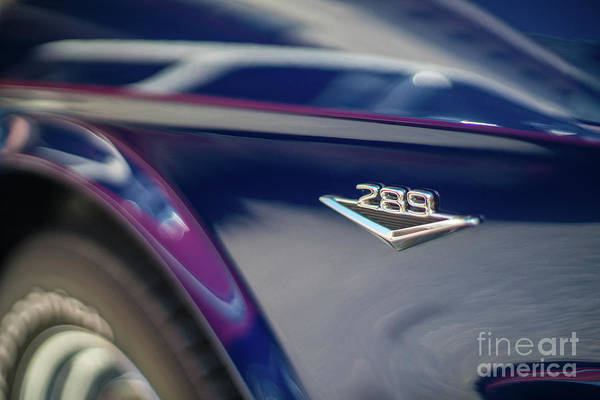 Firebird Photograph - Ford Mustang 289  by Mike Reid