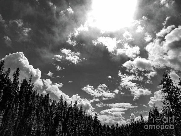 A New Day, Black And White Art Print
