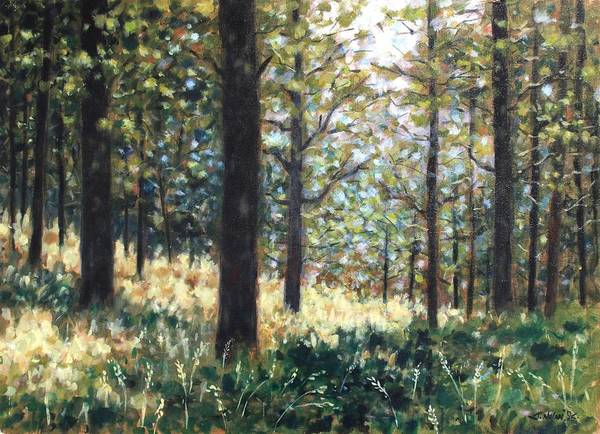 Wall Art - Painting - Forest- County Wicklow - Ireland by John  Nolan