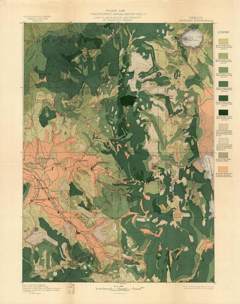 Geological History Wall Art - Drawing - Forest Cover Map 1886-87 - Oregon Ashland Quadrangle - Geological Map by Studio Grafiikka