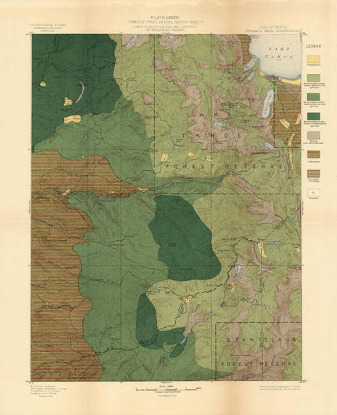 Geological History Wall Art - Drawing - Forest Cover Map 1886-87 - Pyramid Peak Quadrangle - California - Geological Map by Studio Grafiikka