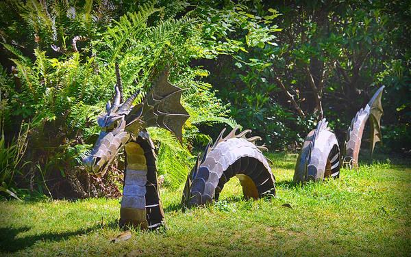 Photograph - Forest Dragon by AJ Schibig