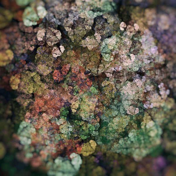 Wall Art - Digital Art - Forest Floor - Fractal by SharaLee Art