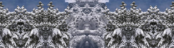 Digital Art - Forest Guardians by Becky Titus