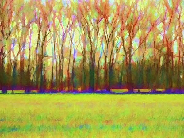 Autumn Colors Digital Art - Forest In Autumn Light by Jon Woodhams