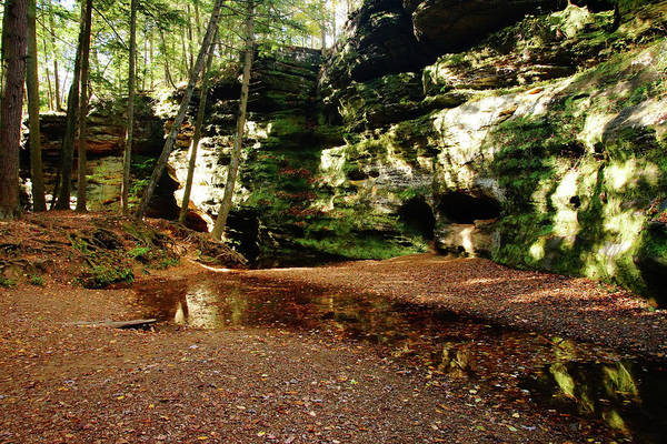 Photograph - Forest Landscape With Cliffs by Mike Murdock
