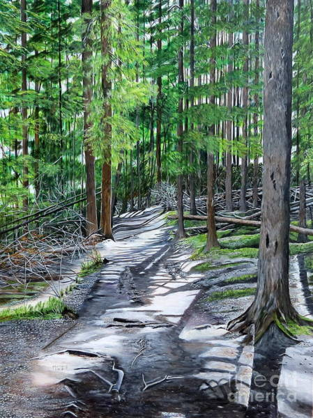 Painting - Forest Path by Marilyn  McNish