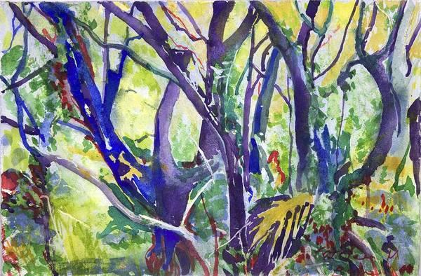 Forest Rainbow Art Print