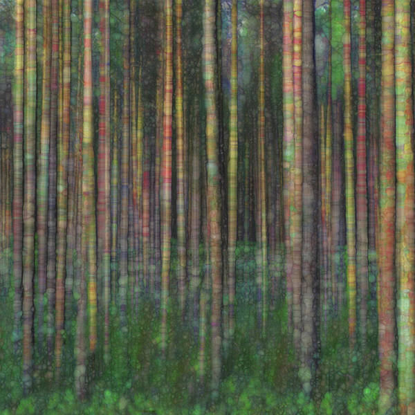 Wall Art - Painting - Forest Series by Jack Zulli