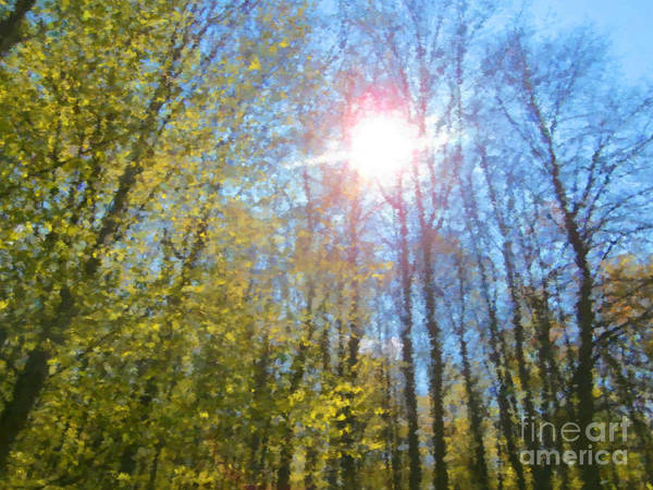 Shrub Mixed Media - Forest Sun by Miroslav Nemecek