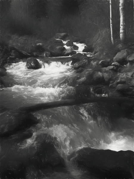 Grayscale Digital Art - Forest Waters by David King
