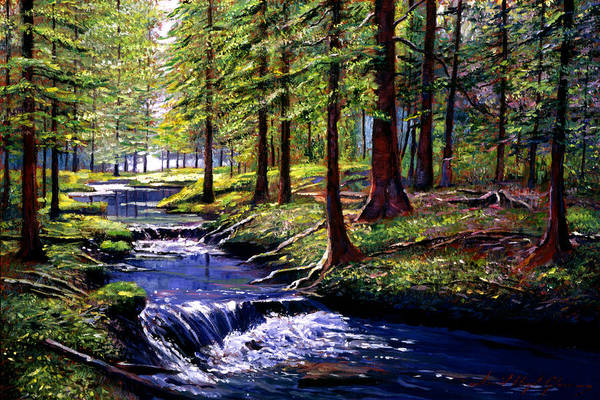 Pine Forest Painting - Forest Waters by David Lloyd Glover
