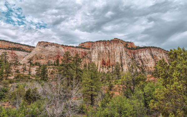 Photograph - Forests And Bluffs by John M Bailey