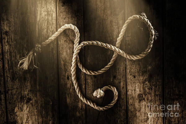 Strength Photograph - Forever A Sailor by Jorgo Photography - Wall Art Gallery