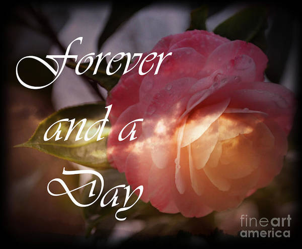 Wall Art - Photograph - Forever And A Day by Eva Thomas